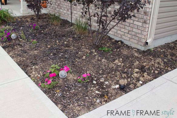 fbfs_tulipsgalore16